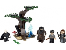 ��������� ��� - ����������� ����� Harry Potter - The Forbidden Forest - Lego 4865